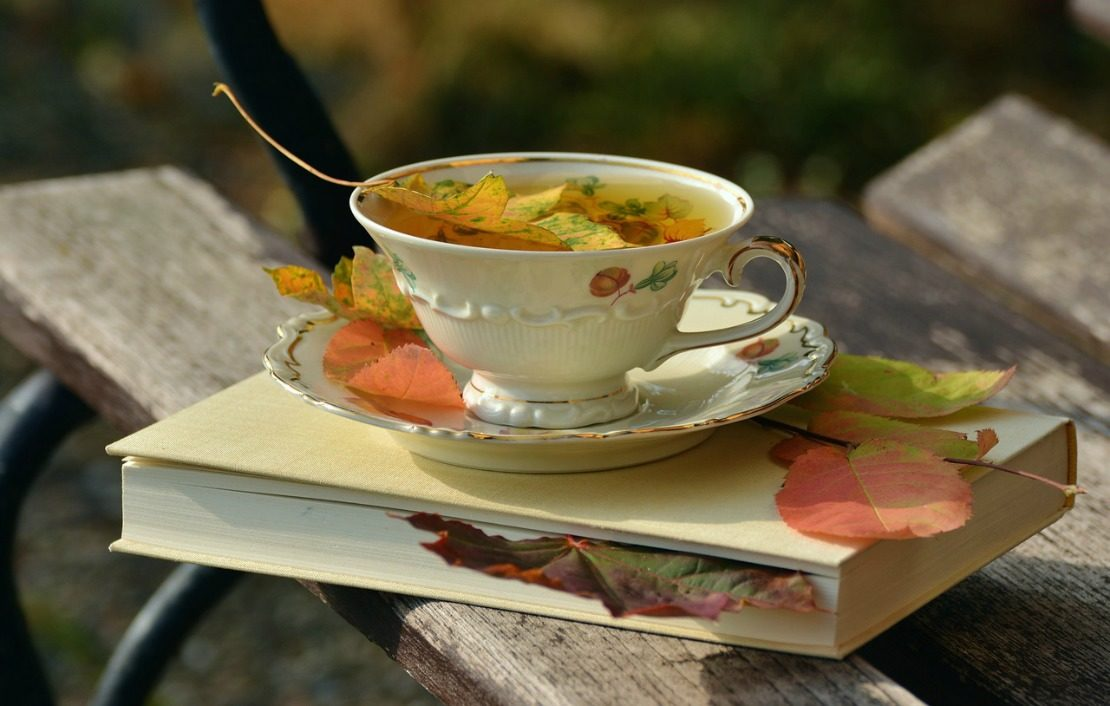 Falling Into Fall With Delightful Guest Speakers | Herbal Academy | Temps are dropping, the teapot is whistling, our first course is off to a great start, and we have guest speakers lined up for fall workshops!