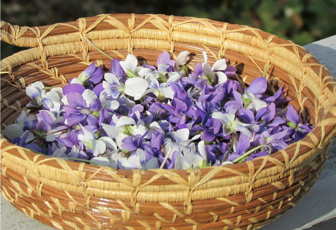 health benefits of violets