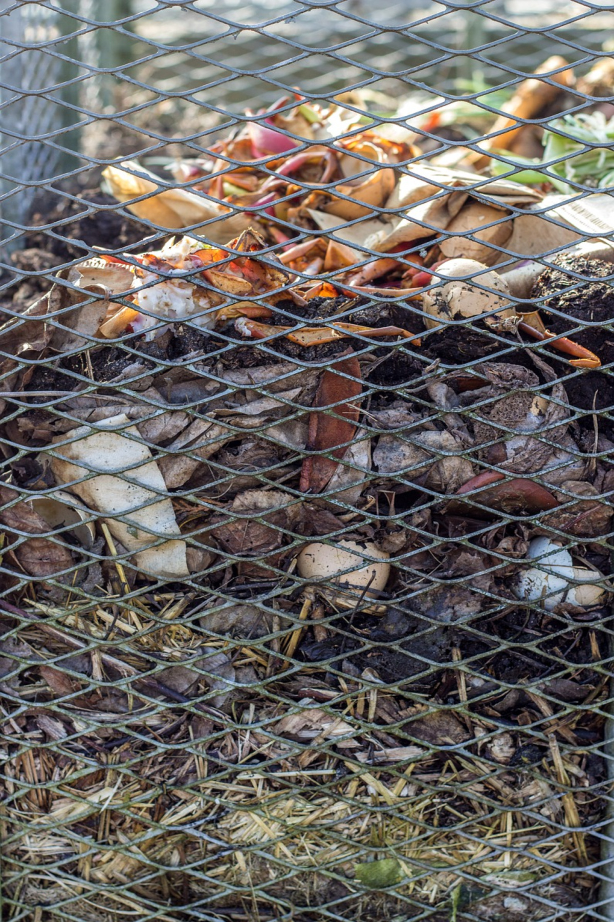 layered compost in wire container