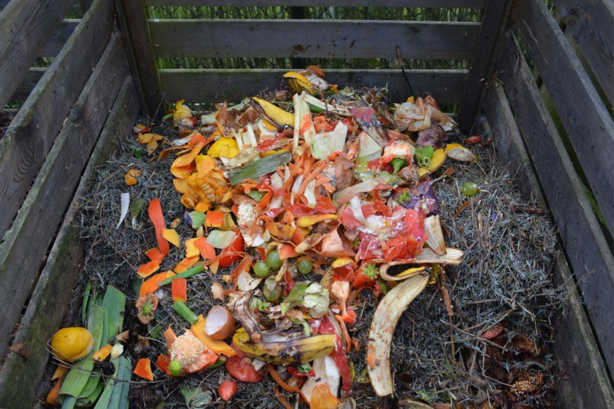 composting pile in a bin