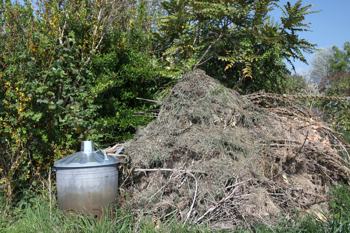 pile of compost on the ground