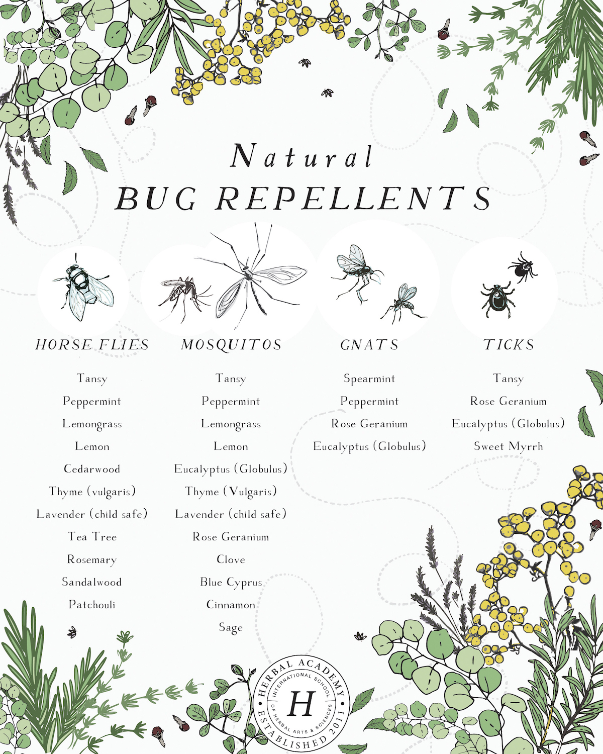 Essential oil Bug Repellents - bug repellent Spritz recipe