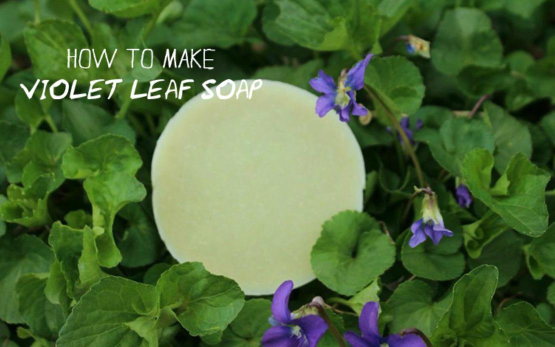 Violet Leaf Soap Recipe – Herbal Academy