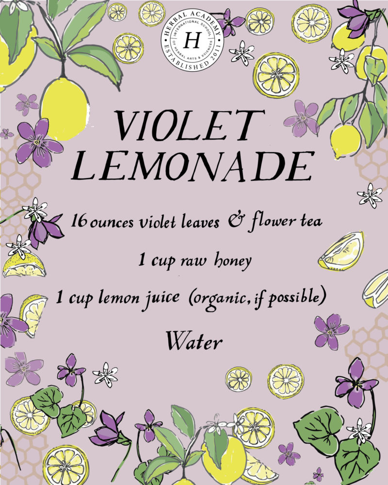Refreshing Violet Lemonade   Herbal Academy   This refreshing violet lemonade recipe can be especially helpful for children, as they might resist a tincture but will happily drink lemonade!