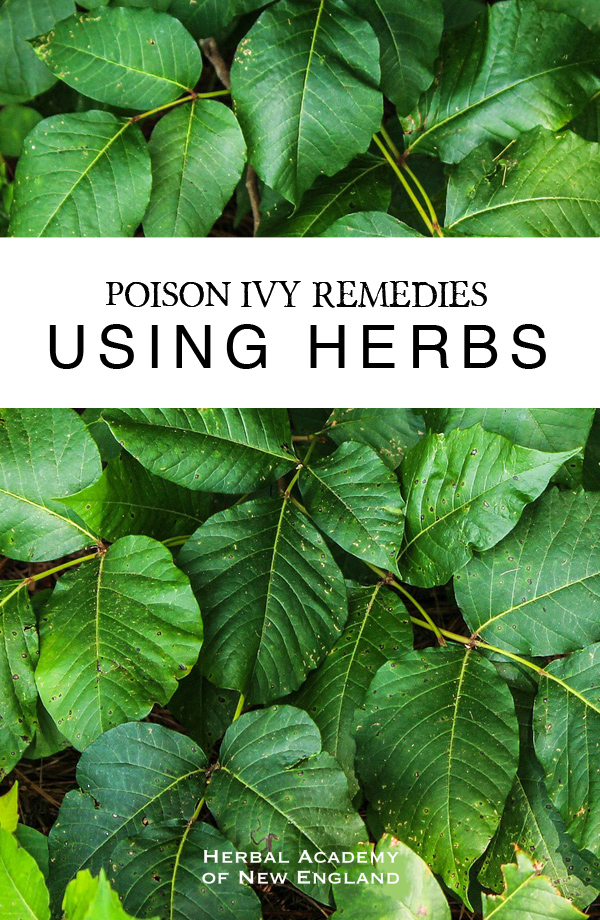 Is There A Good Natural Remedy For Poison Oak
