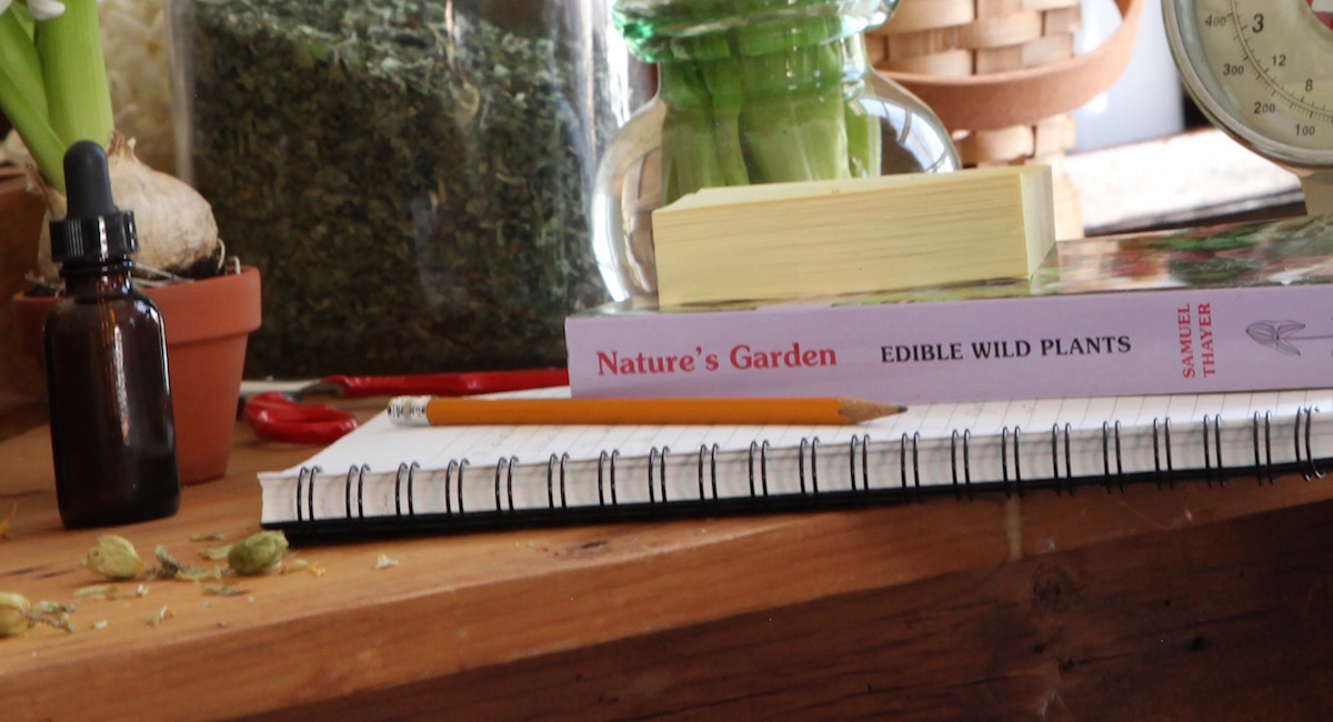 Is Becoming A Clinical Herbalist In Your Future? | Herbal Academy | Learn about the clinical herbalist — what they are, what they do, and how you can begin your journey with the Herbal Academy!