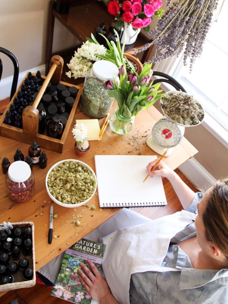 The Advanced Herbal Course - Clinical Herbalism Program