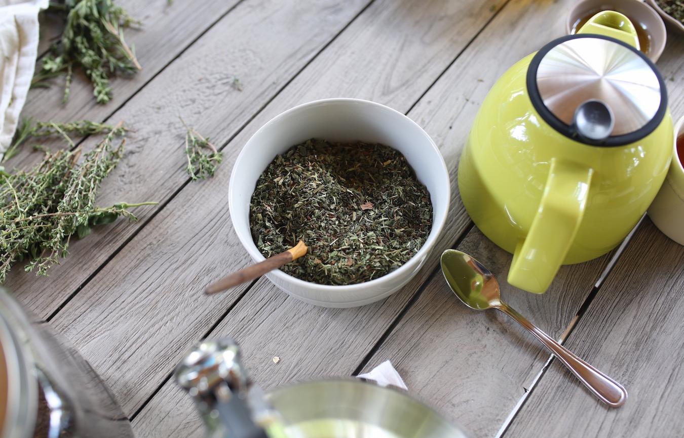 Herbal Academy online programs