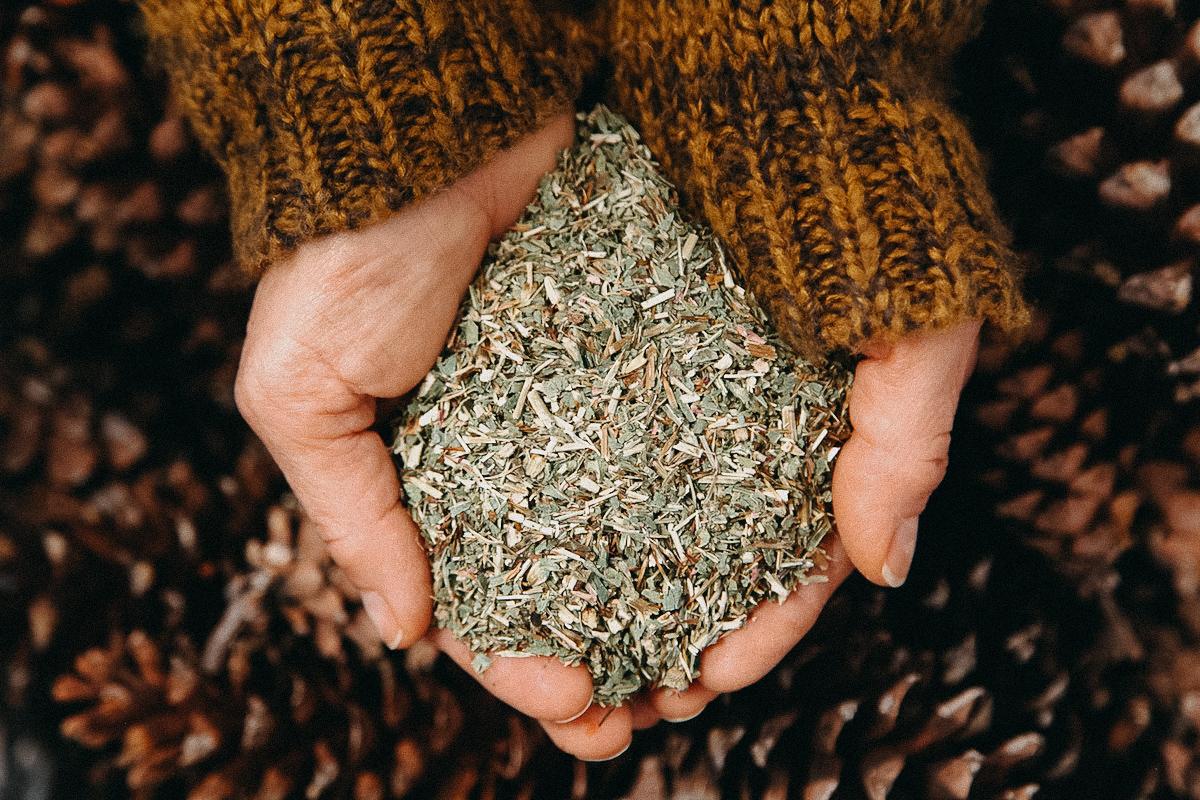 Holding herbs – Herbal Academy