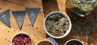 The Entrepreneur Herbal Course - online herbal course