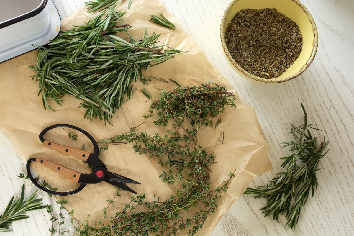 MATERIA MEDICA COURSE by Herbal Academy