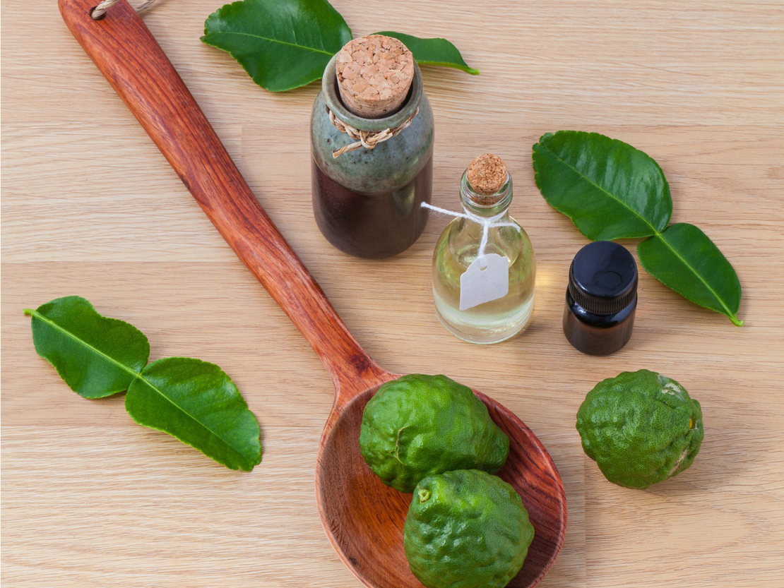 How To Create Simple Perfume Blends Using Aromatic Notes   Herbal Academy   Learn to make your own simple perfume blends and get a DIY recipe to try too!