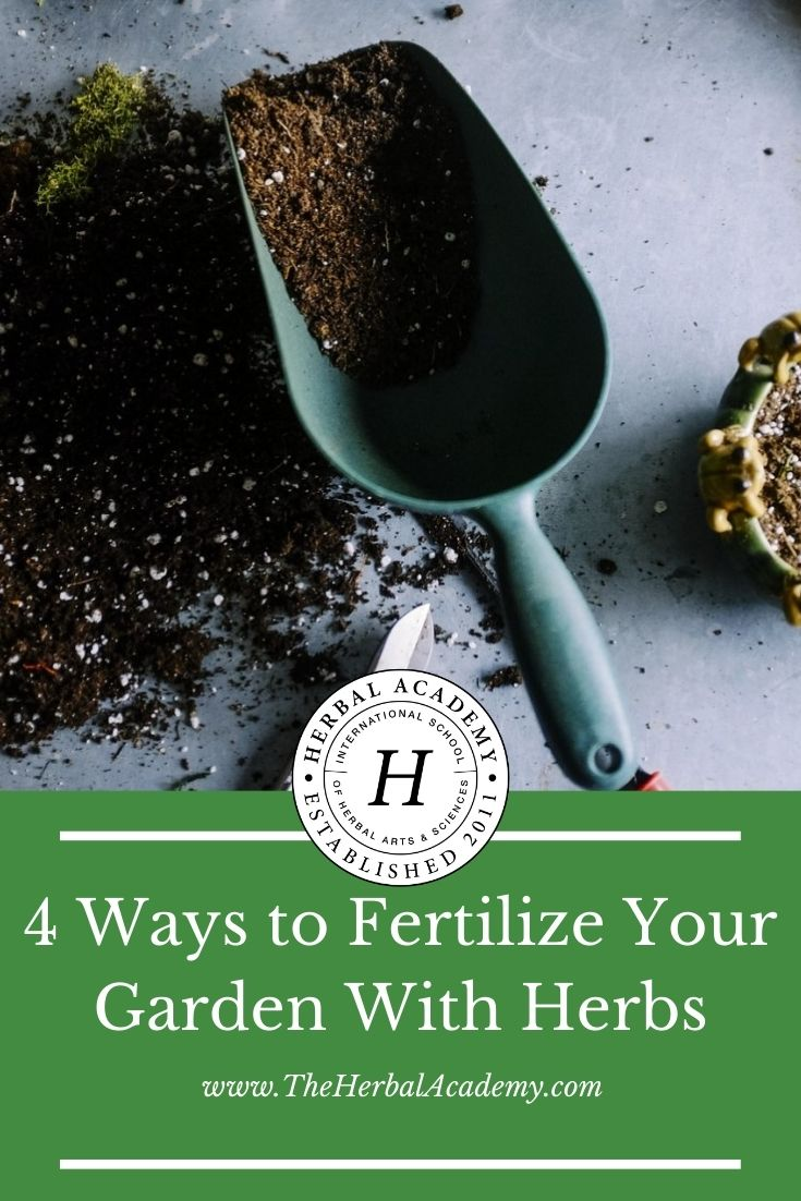 6 Ways To Fertilize Your Garden With Herbs   The Herbal Academy   Herbs can add healthy nutrition to any garden. Learn how to use them as a fertilizer.