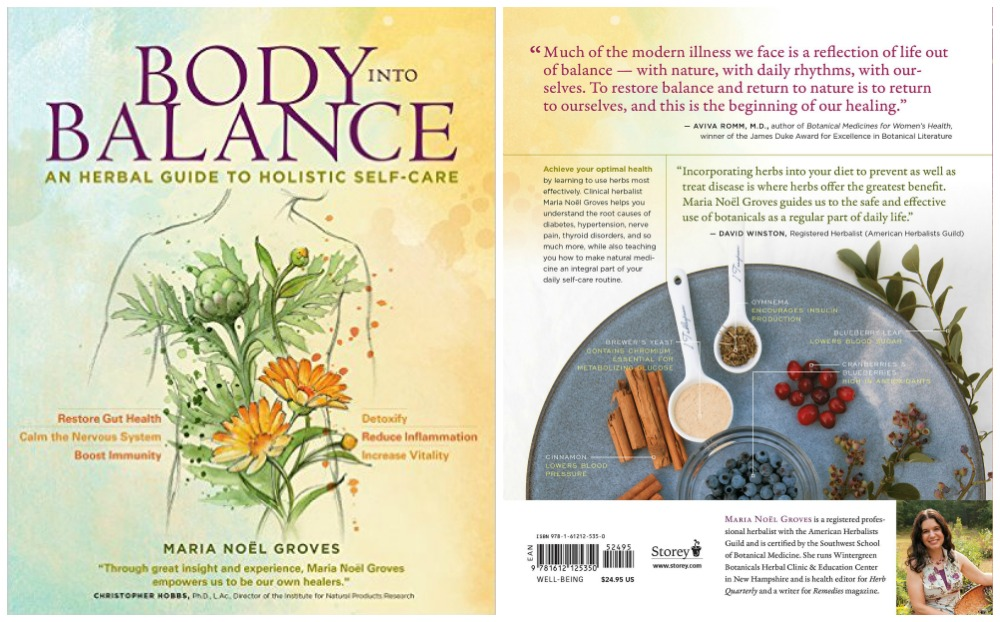 Book Review: Body Into Balance | Herbal Academy | Learn how to use herbs to bring your body into a balanced, healthy state.