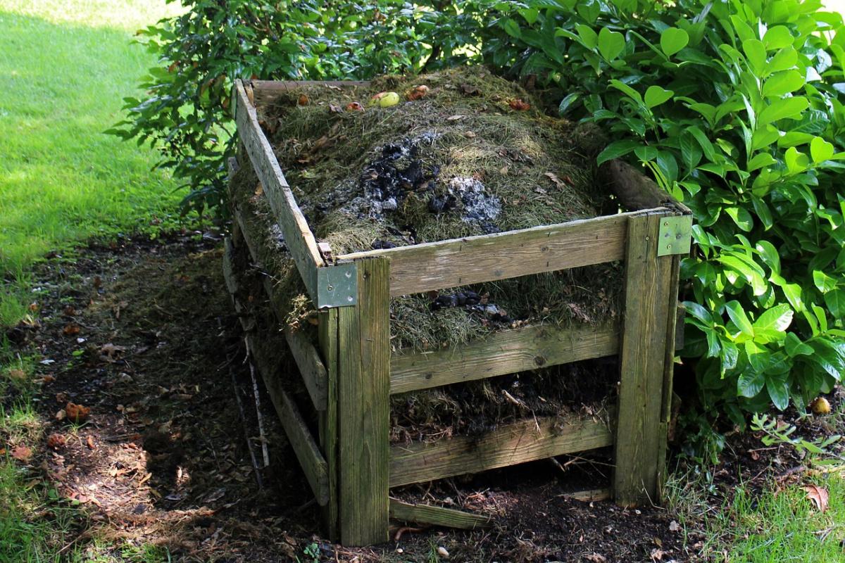 photo of compost bin outside