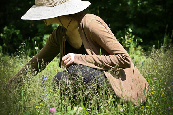 Learning Foraging with the Intermediate Herbal Course