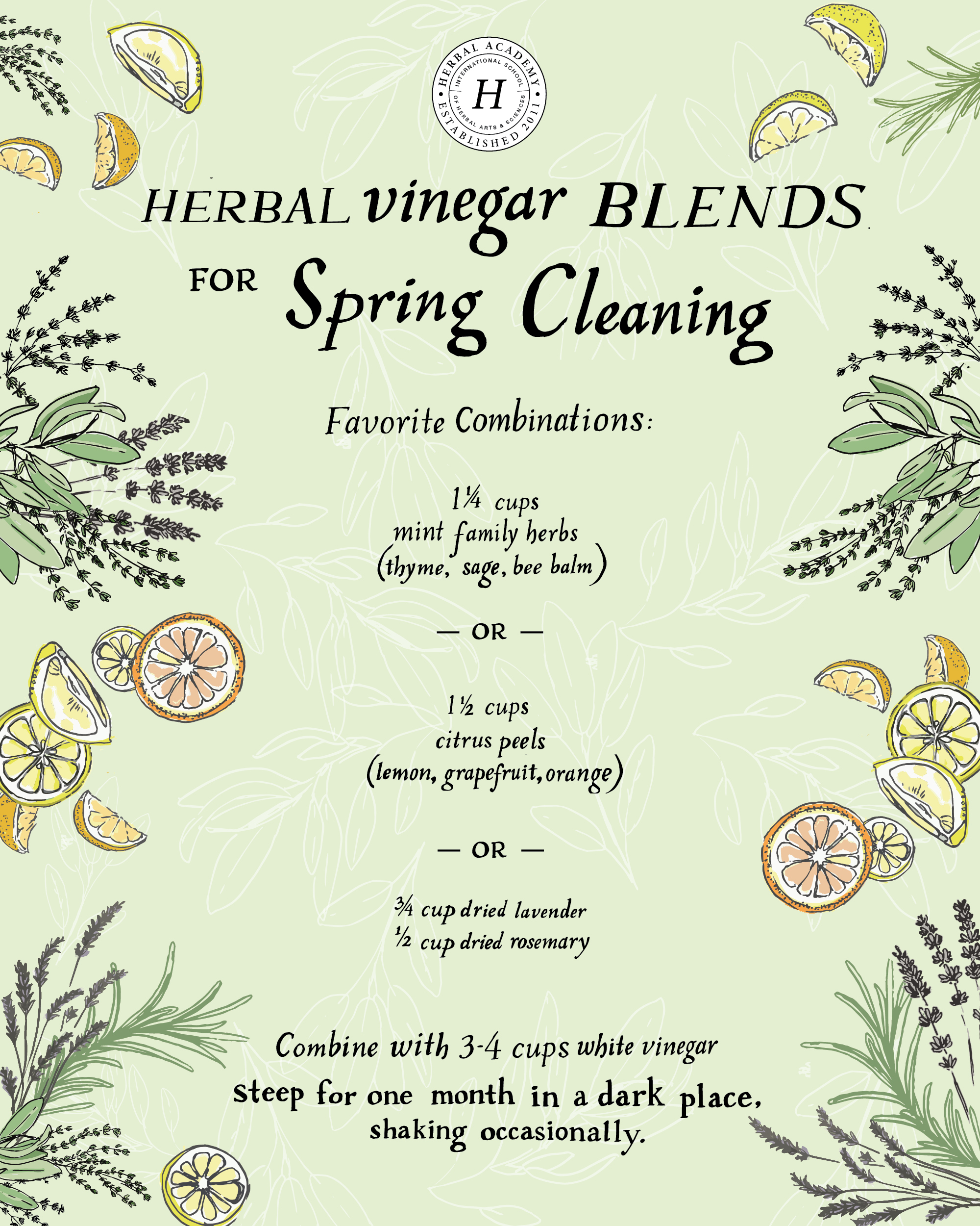 How To Make An All-Purpose Herbal Cleaning Spray For Spring Cleaning | Herbal Academy | Spring cleaning is another opportunity to integrate herbs into our lives. Here's an easy way to do it with an all-purpose herbal cleaning spray!