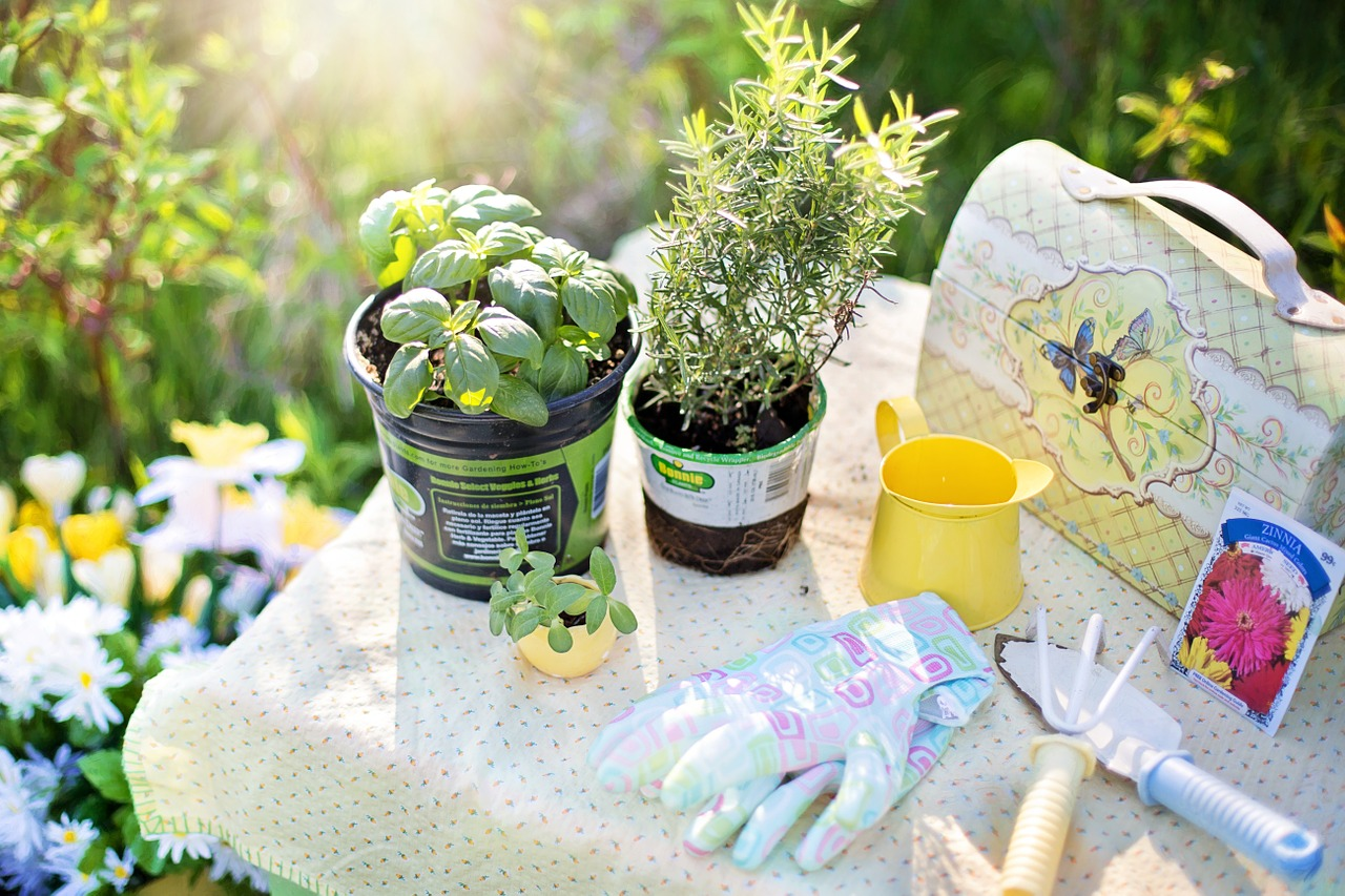 Reflections of an Herb Gardener | Herbal Academy | Here are a few witty herb garden reflections for fellow herb gardeners, and those thinking of starting one! Be sure that you'll gain wisdom, and a few good laughs too!