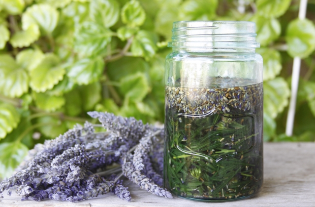 Stocking the Family Herb Cabinet (Family Herbal Summer Series: Part 4)   Herbal Academy   Stock your family herb cabinet with remedies you make together! Also enjoy using simples as a family.