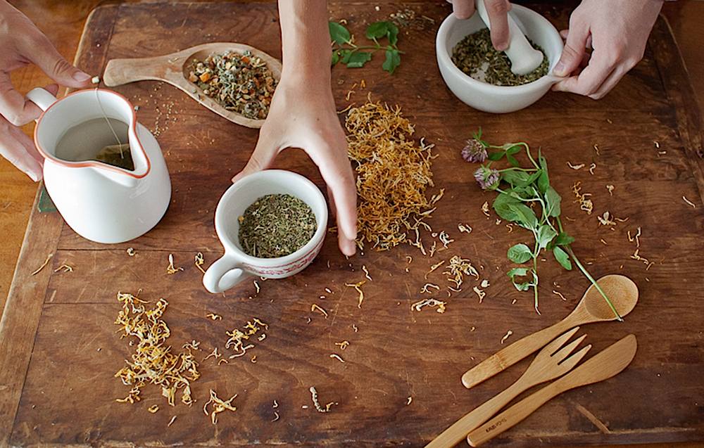 Affordable Herbal Educational Resources