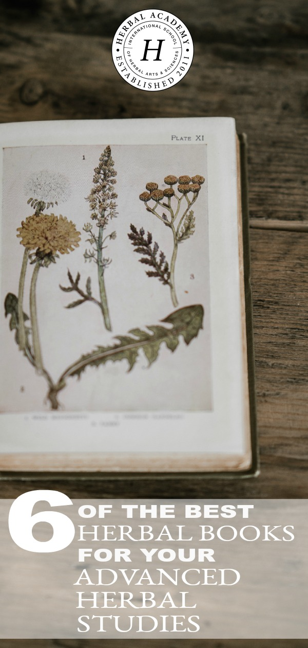 6 of the Best Books For Your Advanced Herbal Studies | Herbal Academy | As an herbalist, it's important to continue to build your herbal library. Here are 6 of the best books for your advanced herbal studies to get started.