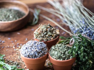 How To Dry Fresh Herbs Using A Dehydrator   Herbal Academy   Preserve your summer harvest. Learn how to dry fresh herbs using a dehydrator to preserve the aroma, flavor, and medicinal qualities of the herbs.