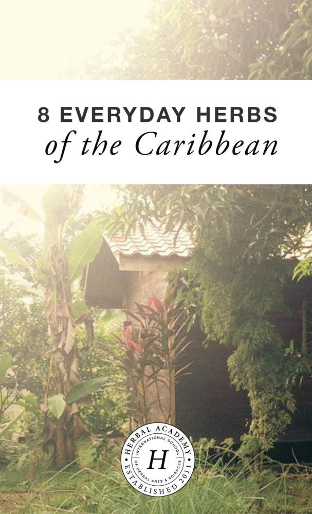 Herbs of the Caribbean