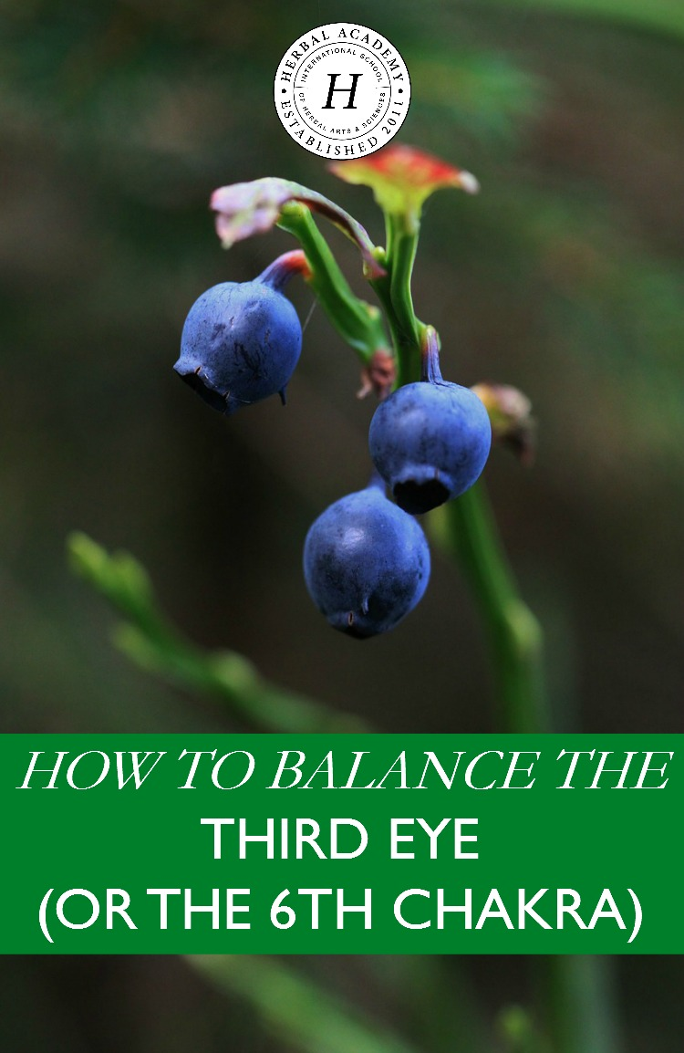 Tips on Balancing the 6th Chakra or the Third Eye | Herbal Academy | Learn what the third eye chakra is and tips on how to balance it with herbs and nature.