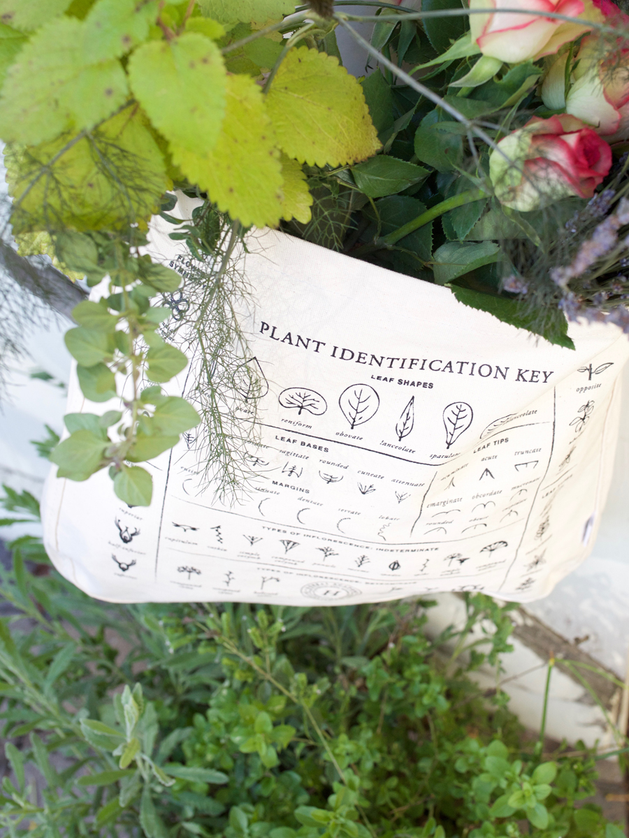 The Plant identification key foraging tote bag by Herbal Academy