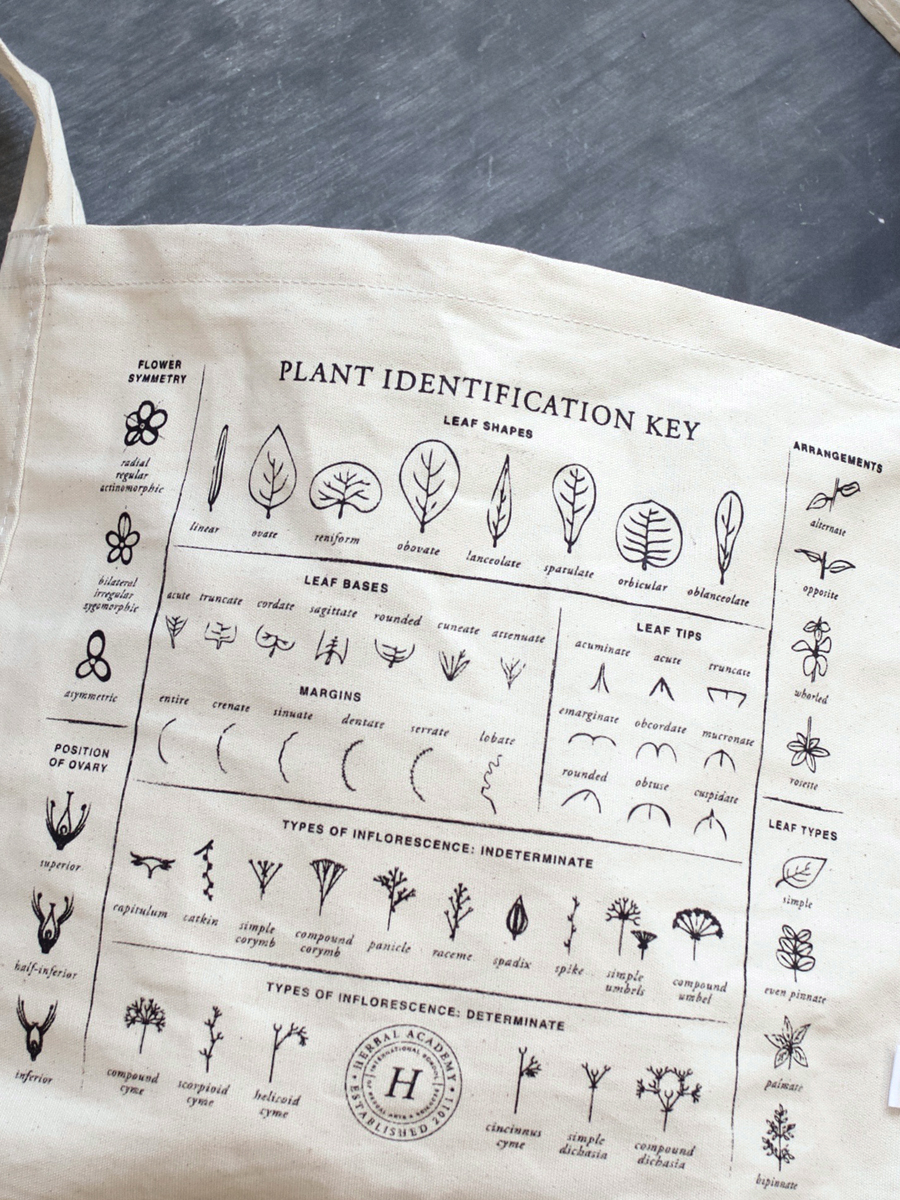 Plant Identification Foraging Tote Bag by Herbal Academy