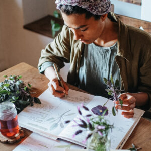 Herbal Materia Medica Course by Herbal Academy