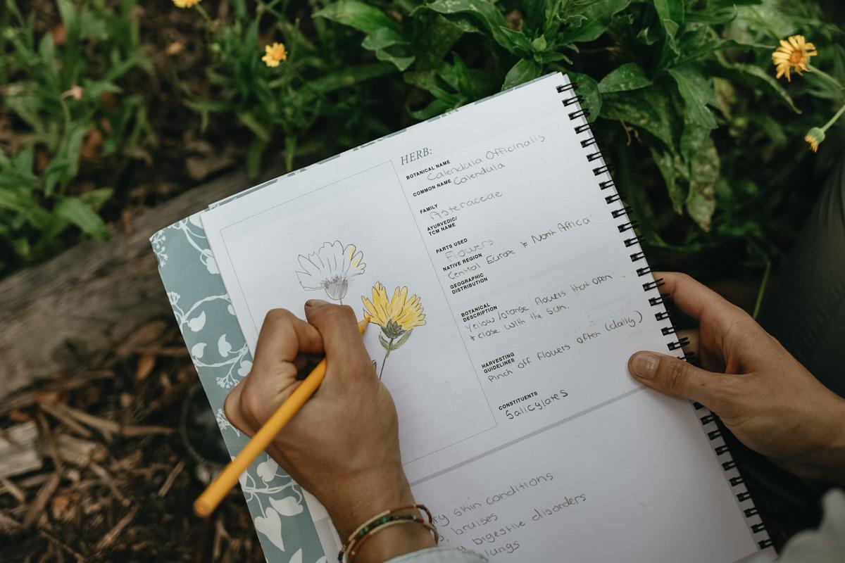 Herbal materia medica journal