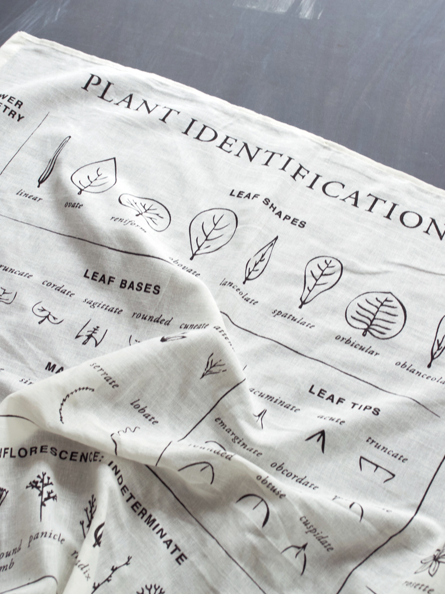 Organic Plant Identification Tea Towel - Herbal Academy