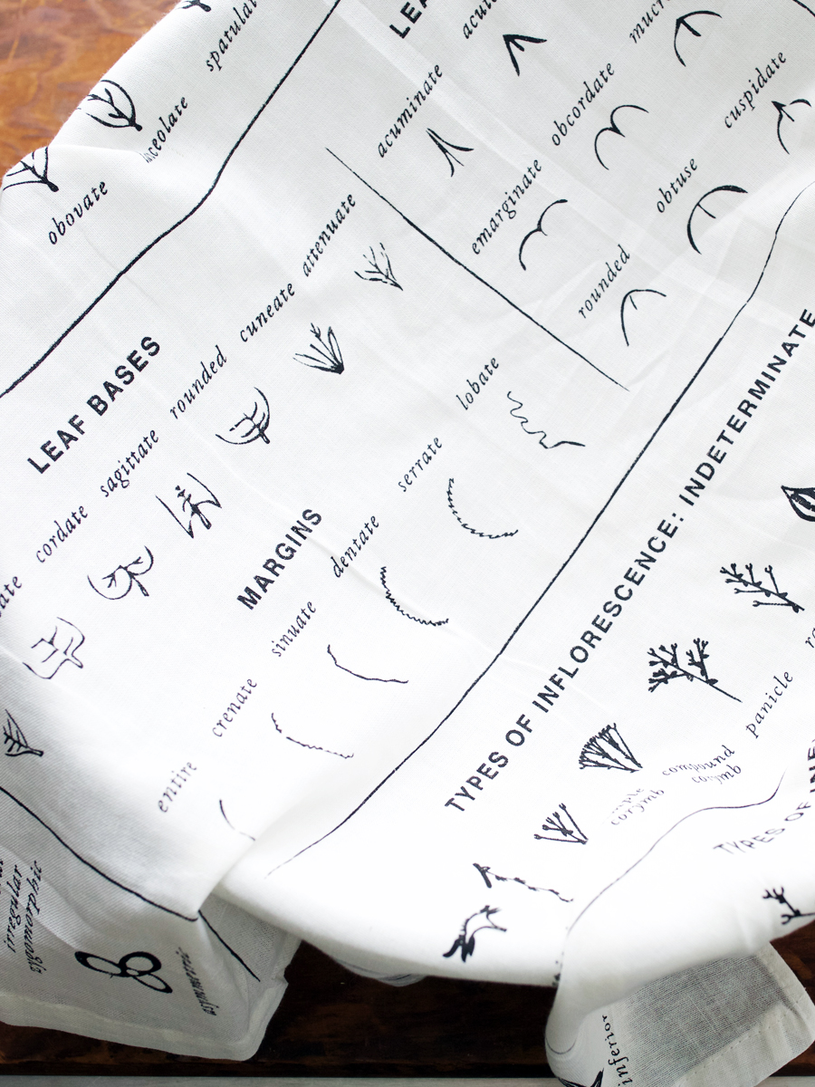 Botanically inspired tea towel by Herbal Academy –Plant Identification Key Flour Sack