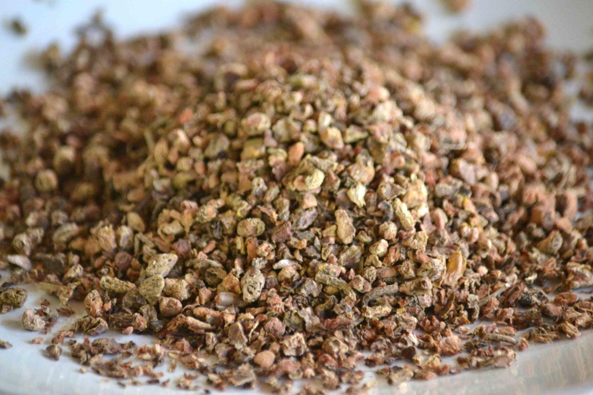 rhodiola adaptogen herb