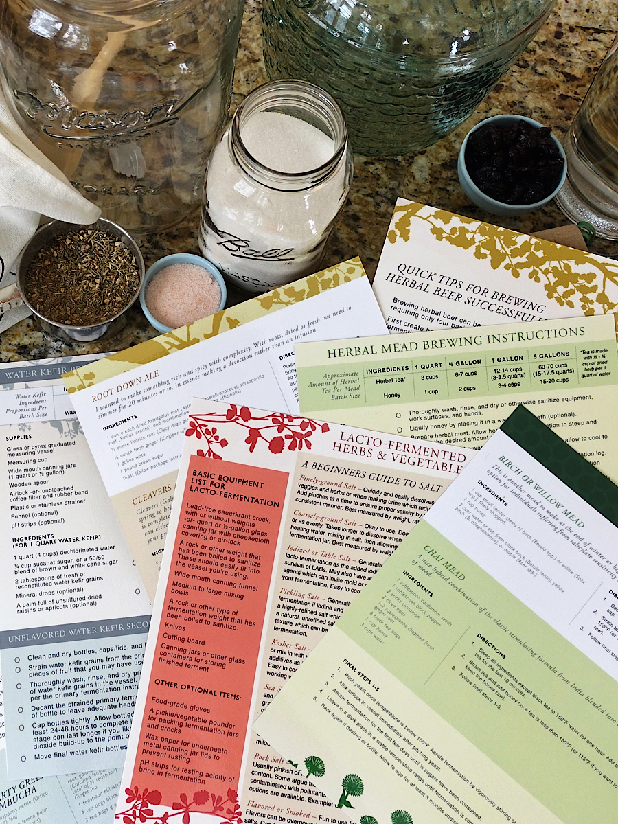 The Craft of Herbal Fermentation Course by the Herbal Academy - Laminated Recipe Guides