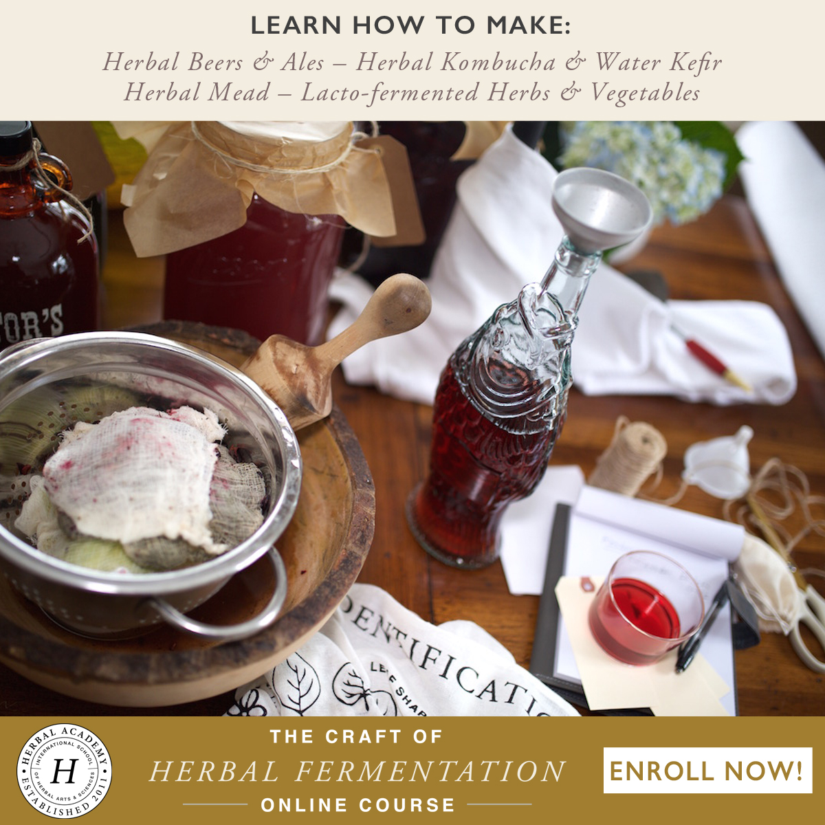 Now Enrolling: The Craft of Herbal Fermentation | Herbal Academy | Join us in our newest short course. Learn to make herbal beer, mead, and wine, herbal kombucha and water kefir, and lacto-fermented foods!