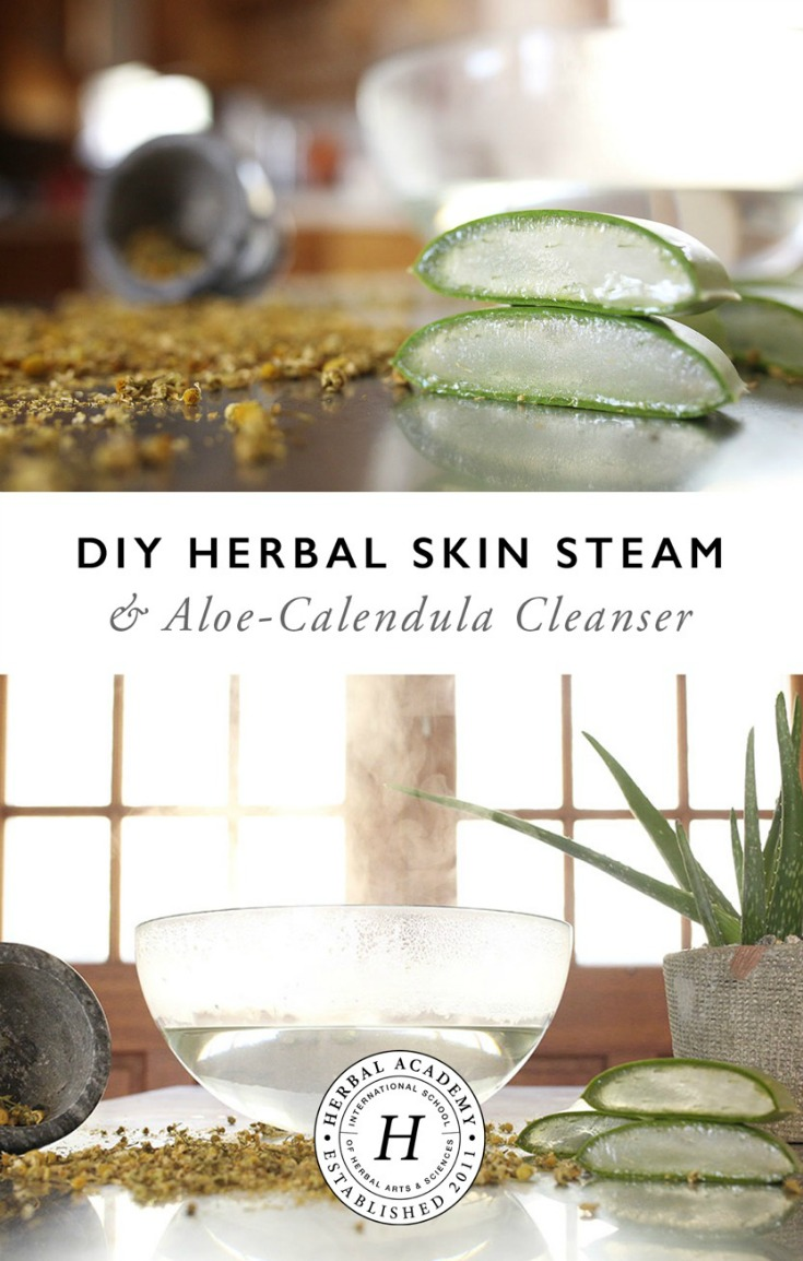 DIY Herbal Skin Steam and Aloe-Calendula Cleanser | Herbal Academy | Cleanse and moisturize your face with this DIY Herbal Skin Steam and Aloe-Calendula Cleanser for glowing skin!