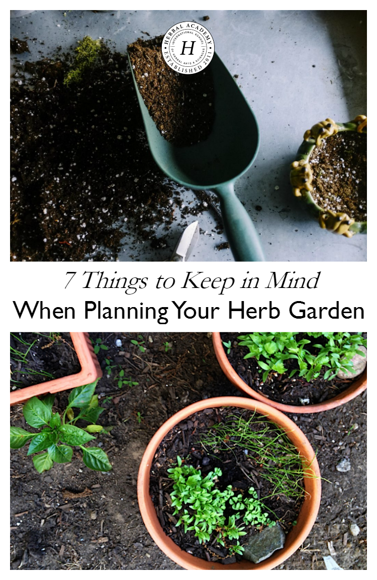 7 Things to Keep in Mind When Planning Your Herb Garden | Herbal Academy | Keep these things in mind when planning your herb garden. Herb gardens are a wonderful way to use fresh herbs when cooking and making home remedies!