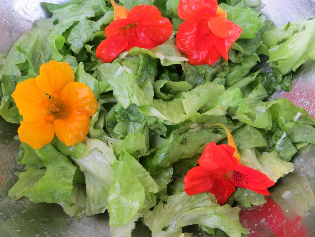 9 Edible Flowers and How To Use Them | Herbal Academy | Discover how to use edible flowers and take a closer look at nine of our favorites!