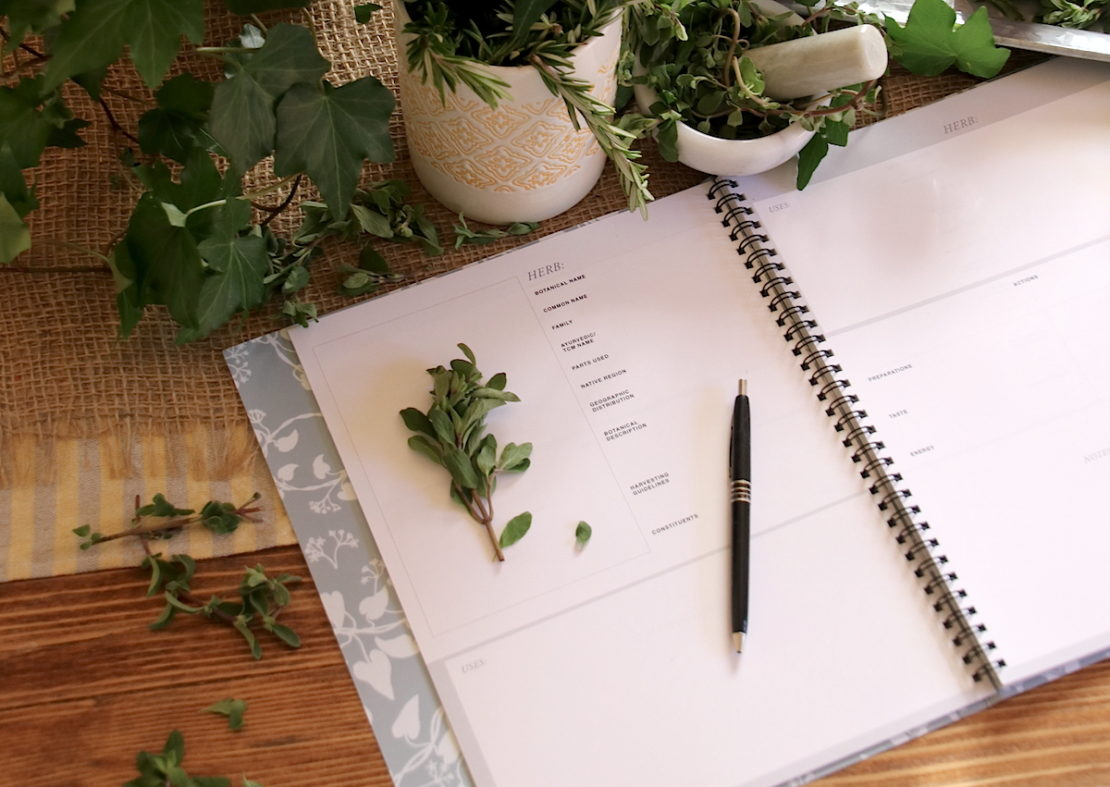4 Questions To Ask Before Going To Herbal School   Herbal Academy   Thinking about going to herbal school? How do you know if our herbal school is right for you? Here are 4 questions to ask yourself before deciding!