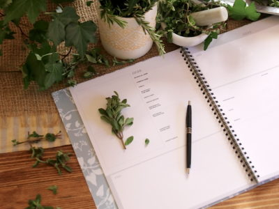 4 Questions To Ask Before Going To Herbal School | Herbal Academy | Thinking about going to herbal school? How do you know if our herbal school is right for you? Here are 4 questions to ask yourself before deciding!