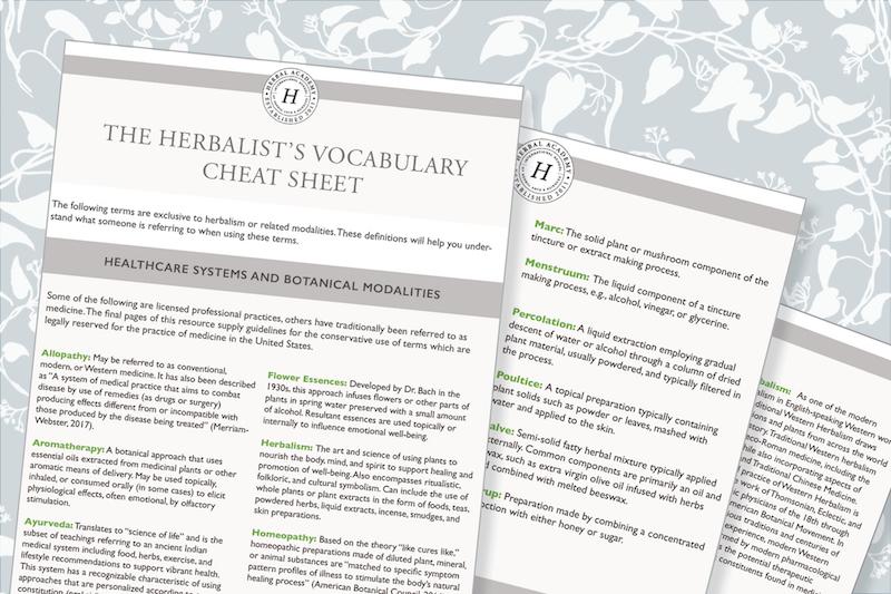 The Herbalist's vocabulary Cheat Sheet