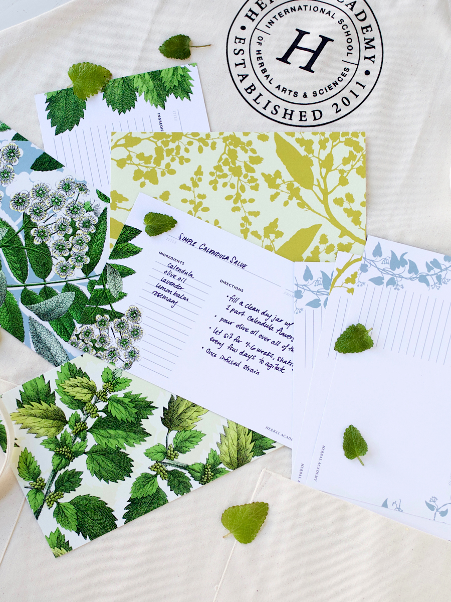 Botanical Design Recipe Cards HA Shop