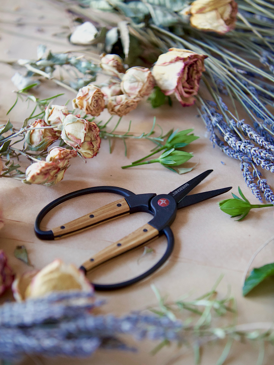 Foraging Scissors in the Herbal Academy Goods Shop