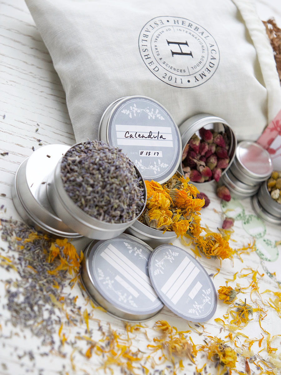 Herbal Tin Container Set by Herbal Academy
