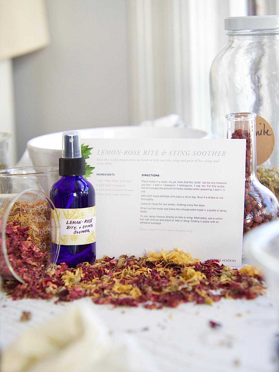 Herbal Recipe Cards - Herbal Academy Goods Shop
