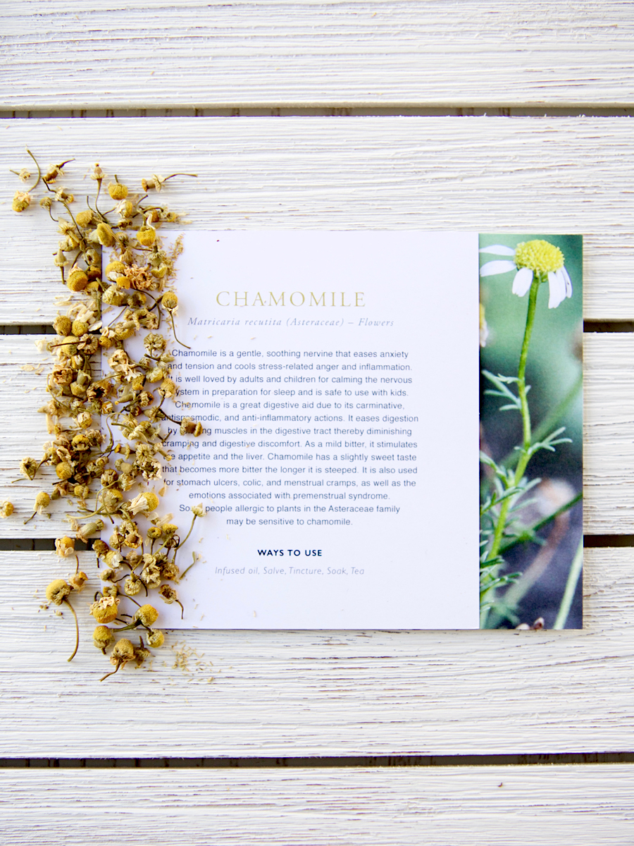 Mini Plant Monograph Cards in the Herbal Academy Goods Shop