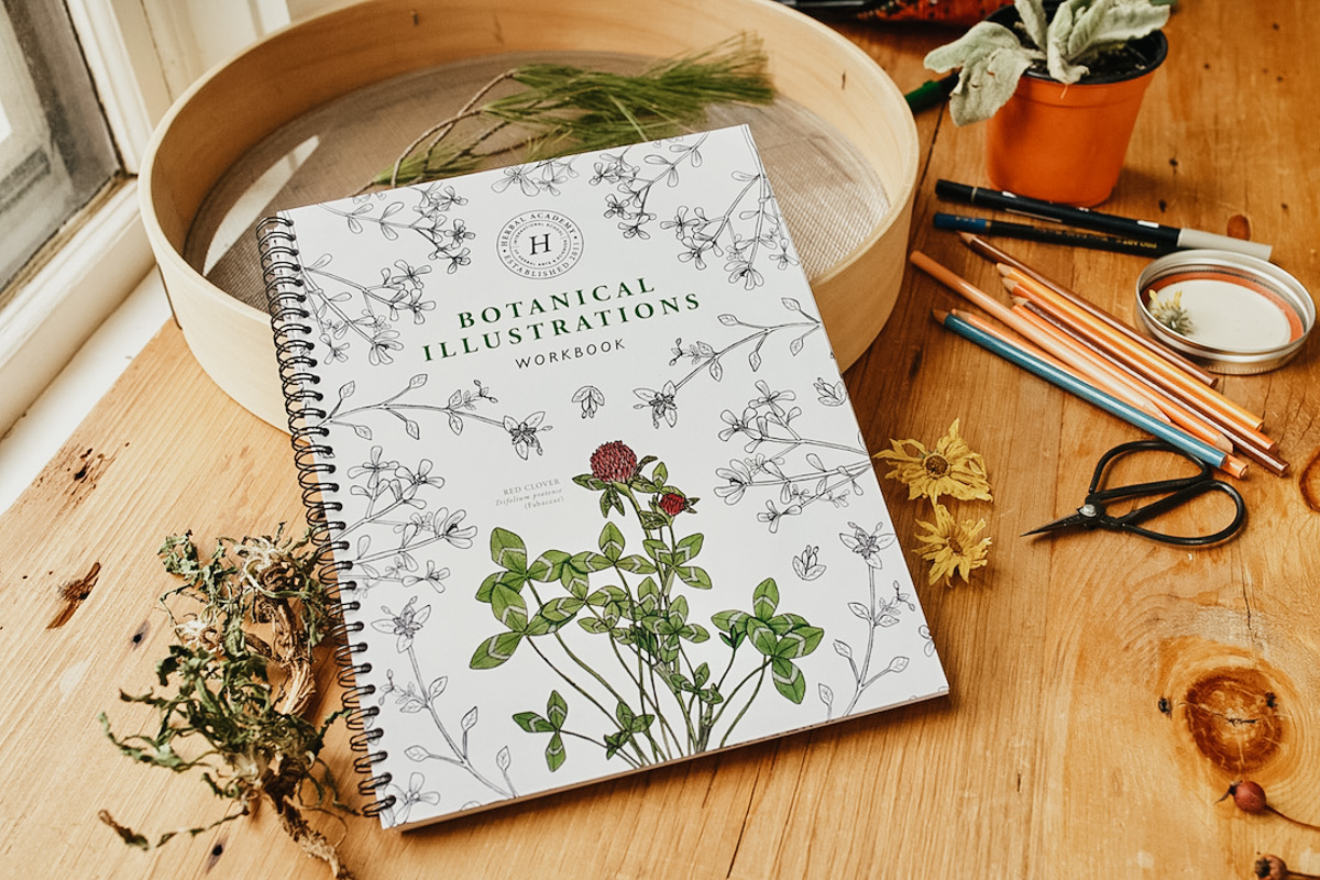 Herbal Academy's Botany and Wildcrafting Course