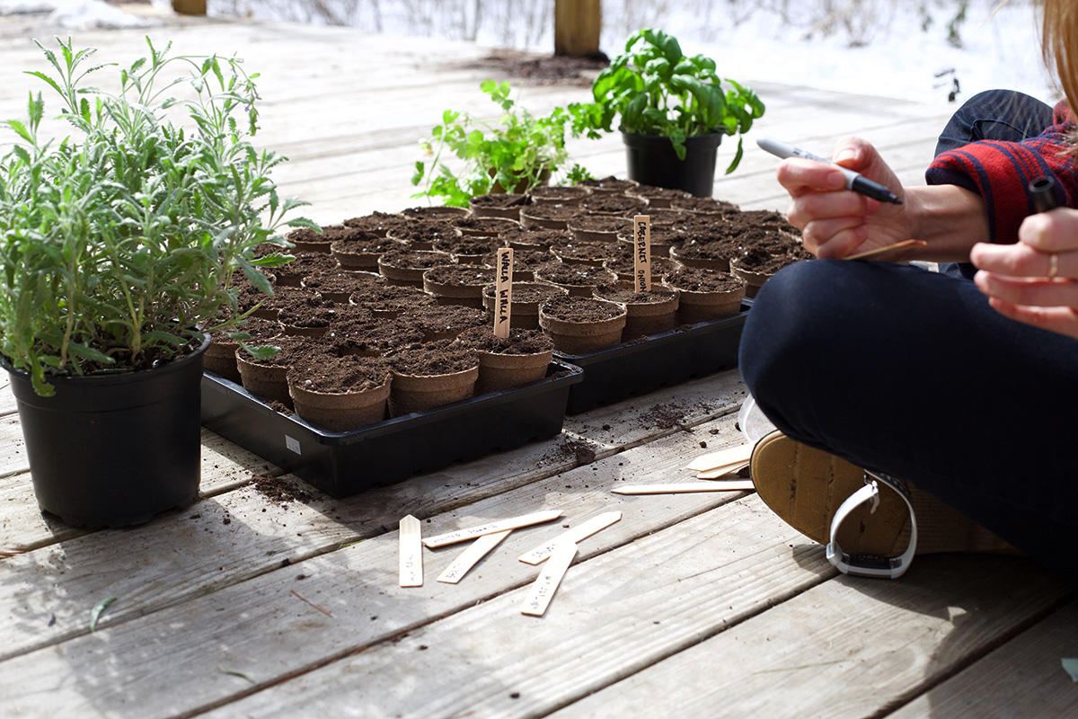 12 Permaculture Principles to Use When Planning Your Herb Garden | Herbal Academy | Permaculture principles are not just a way of growing things, they're a way of life. Here's 12 suggestions to assist you in your herb garden planning.